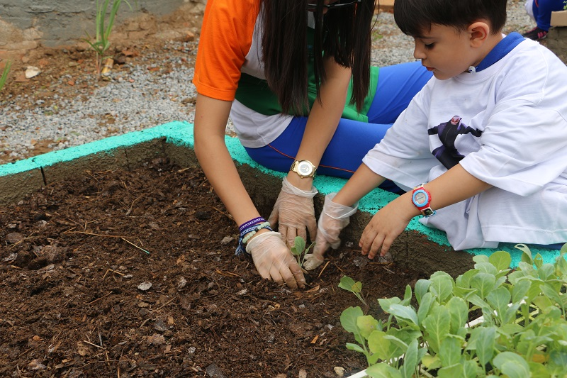 Alunos do Colégio São José idealizam horta comunitária - Repórter Diário